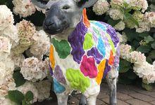 Das erste Schaf ist fertig